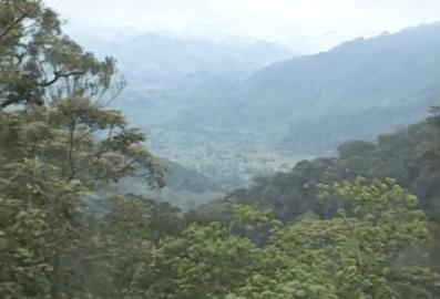 CREDIT Rwanda Alive