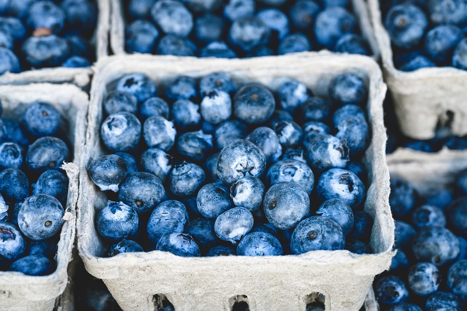 A pint container filled with blueberries.