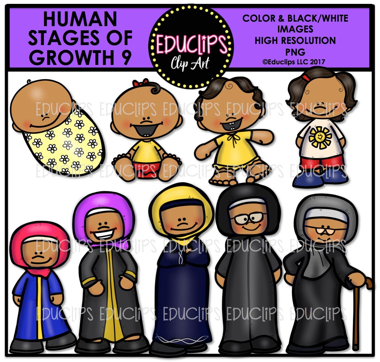 Human Stages Of Growth 9