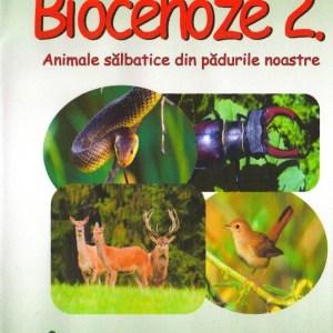 RV2 DVD R 1
