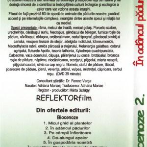 RV2 DVD R 2