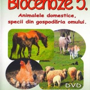 RV5 DVD R 1