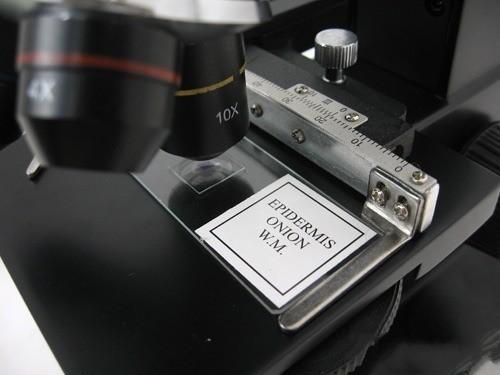 EV5610 6