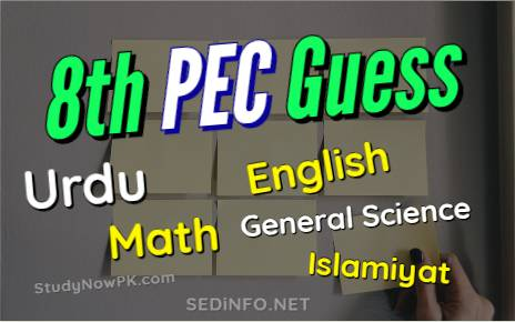 8th Guess Papers All Subjects Latest fi