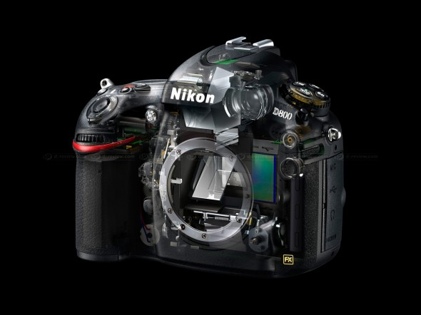 Nikon new d800