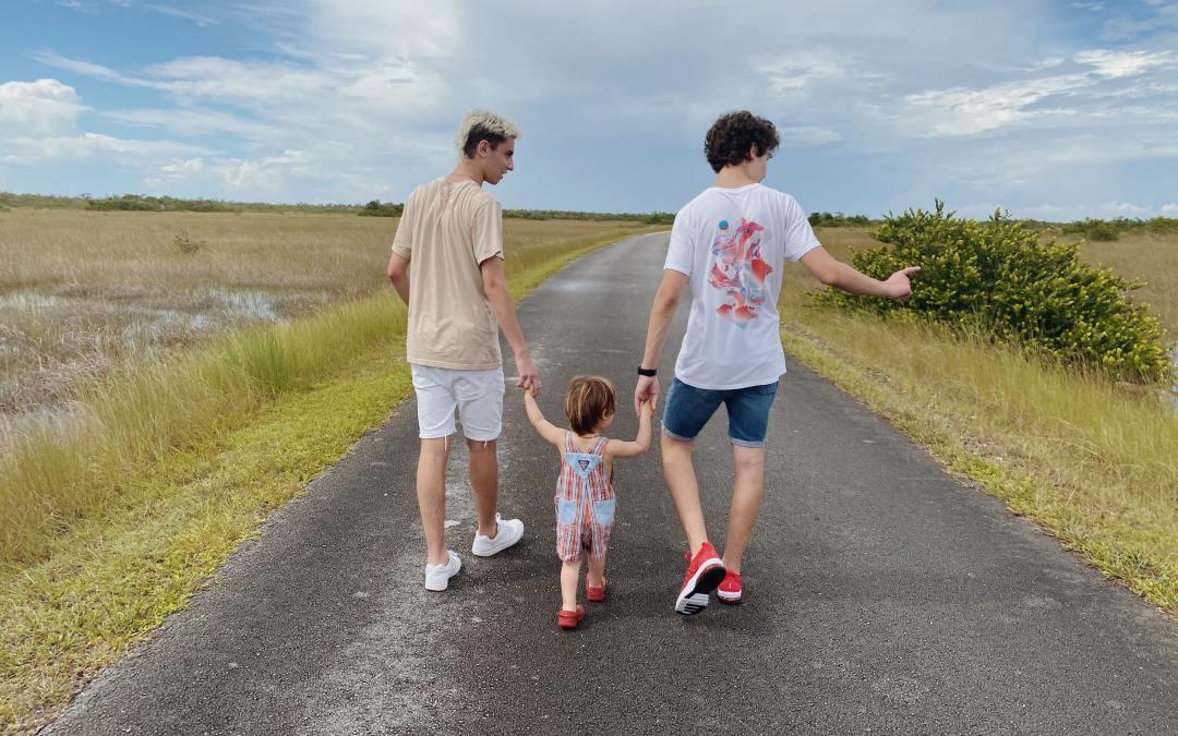 Las Familias Actuales – Tipología Familiar Sistémica