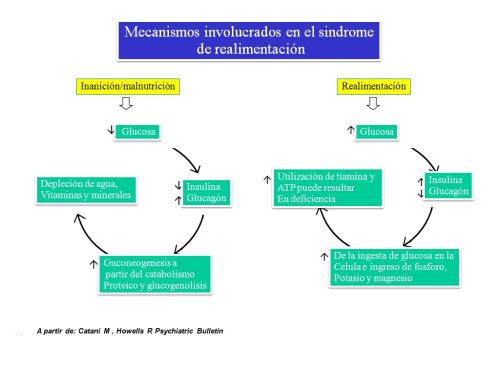 Sindrome de realimentación: El rol del nutricionista clínico