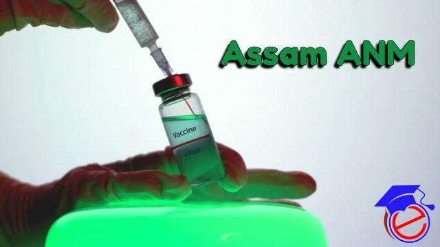 Assam ANM