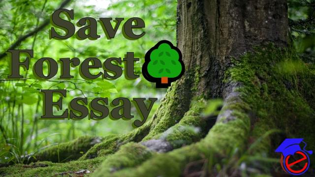 Save Forest Essay