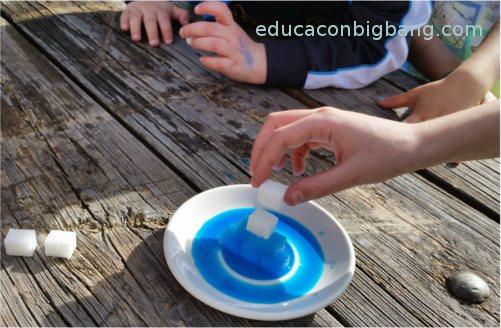 Agua coloreada trepando por terrones de azúcar