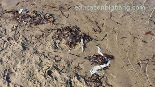 plásticos en la orilla