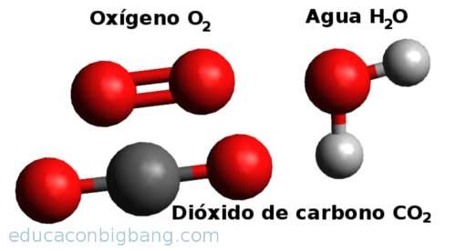 moléculas covalentes sencillas