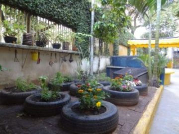 hortas com materiais reciclados