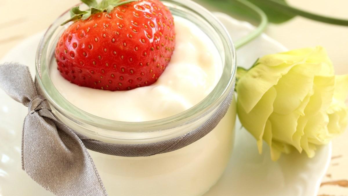 yogur