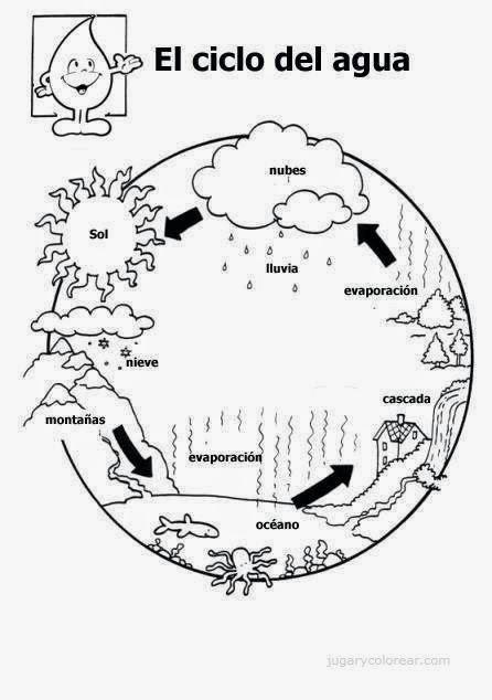 im u00e1genes del ciclo hidrologico del agua para colorear e