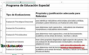 programa-educacion-especial