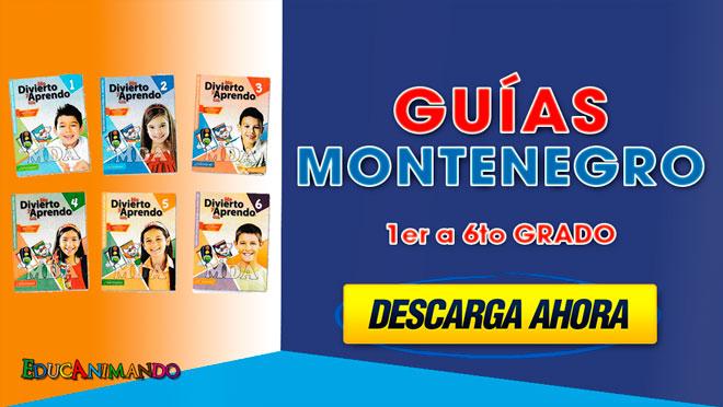 GUÍAS MONTENEGRO DE 1er a 6to GRADO
