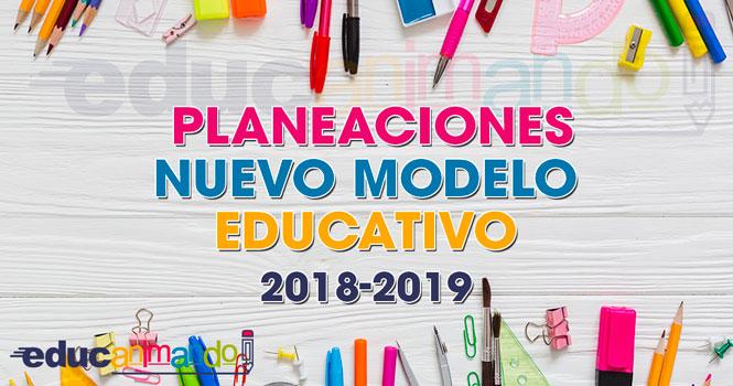 PLANEACIONES NUEVO MODELO EDUCATIVO 2018-2019