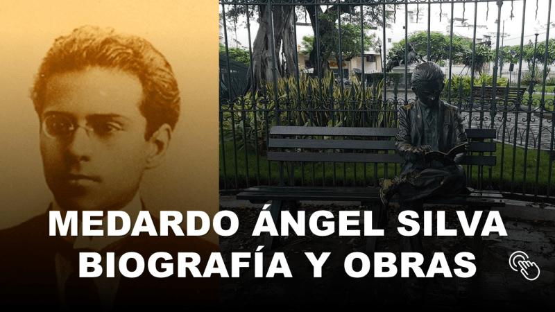 Medardo Ángel Silva Biografía y Obras