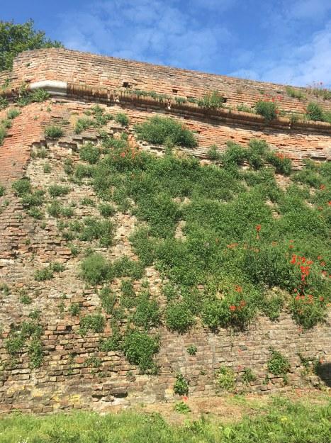 The monumental walls of Ferrara