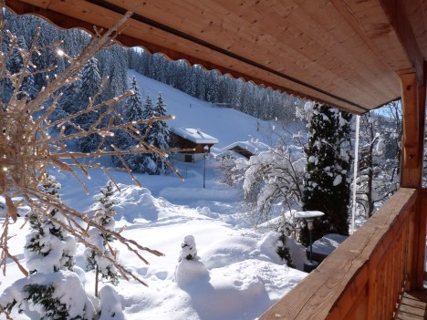 Paradise in the Alps