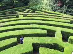 The labyrinth at Villa Pisani (Nazionale)