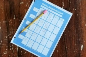 Weekly Assignments Sheet, homeschooled child's weekly assignment sheet