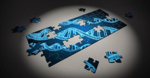 勉強 遺伝