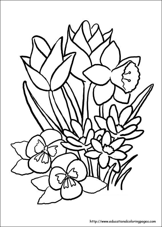 Spring Coloring Pages Free For Kids
