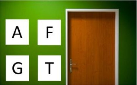 Fun phonics activities for letter sounds