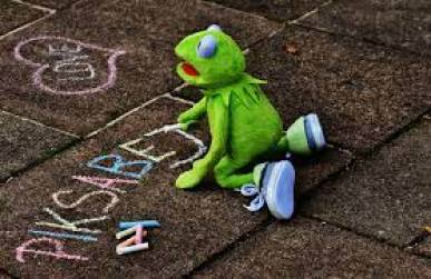 Free Images : grass, ground, cute, green, color, paint, frog, colorful,  painting, font, textile, drawing, funny, painted, stuffed animal, draw,  kermit, frogs, written, stra enkreide, street chalk, soft toy, pixabay,  typographical errors