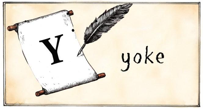 Y- yoke