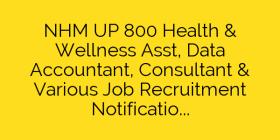 NHM UP 800 Health & Wellness Asst, Data Accountant, Consultant & Various Job Recruitment Notification