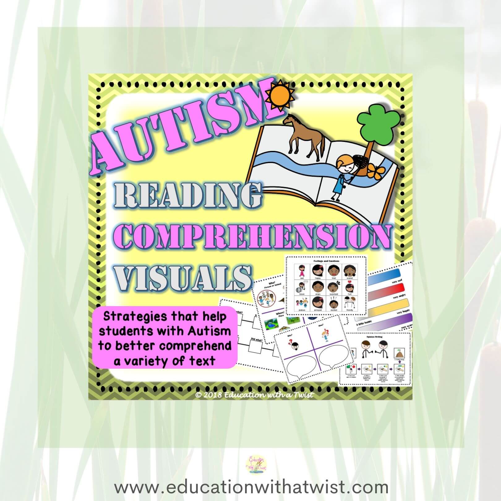 Autism Reading Comprehension And Worksheets Strategies