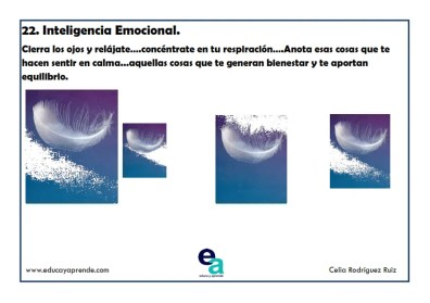 inteligencia-emocional-3_022