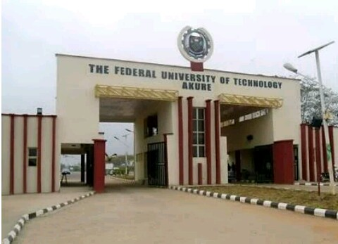 ASUU as a problem of the Nigerian university system
