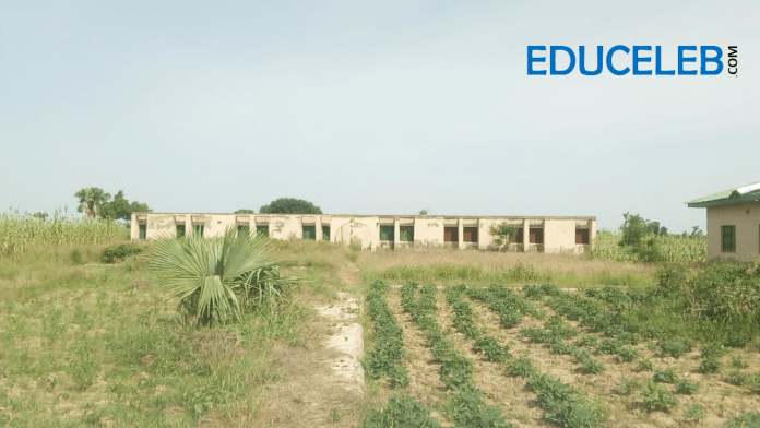 Exterior view of the looted hostel complex at the Almajiri Model School, Dutsin-Ma