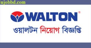 walton group new bd job circular