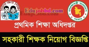 Primary School Teacher Vacancy Job Circular 2017