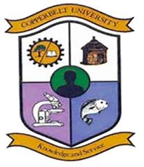 Copperbelt University School Fees