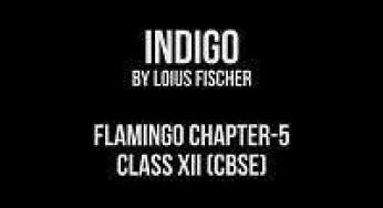 Chapter-5 Indigo- Extra Questions and Notes |