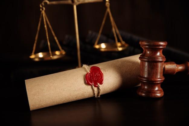 دكتوراة القانون الدولي