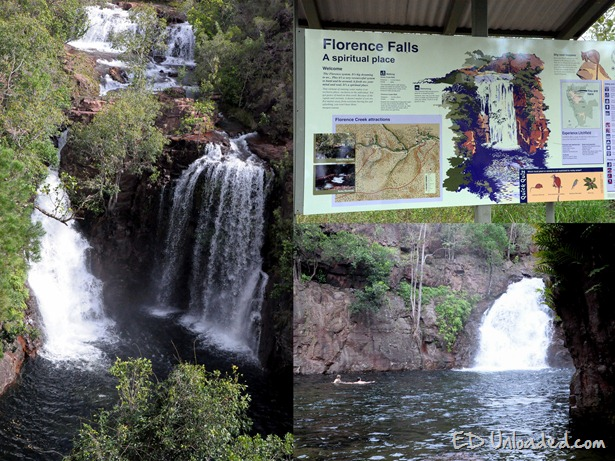 florence falls collage