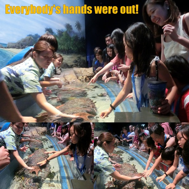 touching fishes
