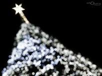 Navidad-en-Madrid_2011_67