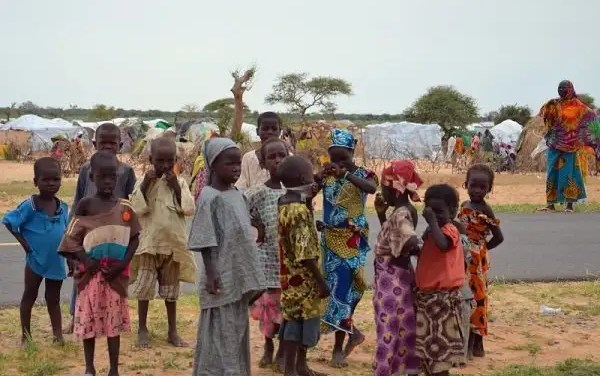 20% of school children in Nigeria are out of school