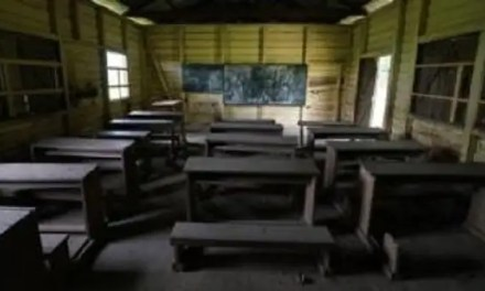 School children forced out of schools for 3 years due to violent conflict in Cameroun