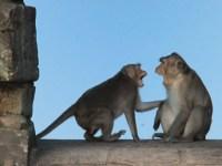 Résoudre dans la bonne humeur un conflit en 6 étapes !