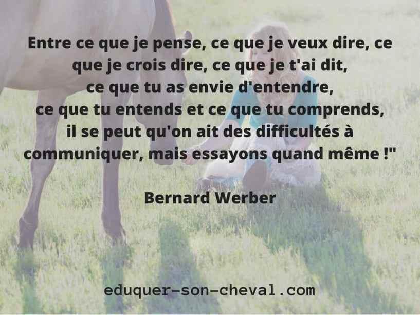 proverbe-werber
