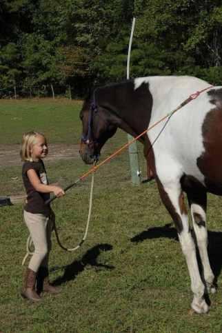 créer une complicité avec son cheval